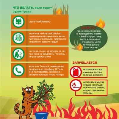 Пожароопасный период: Как и где правильно сжигать сухую растительность?