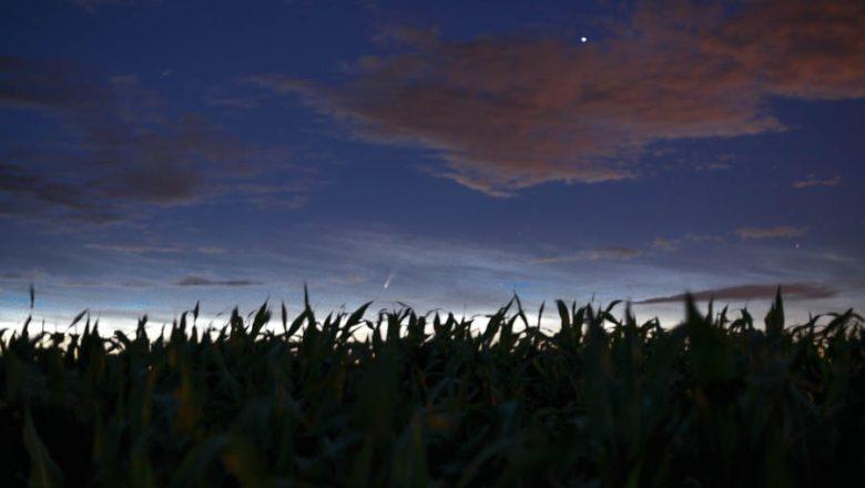 Фотофакт. Самая яркая комета за последние семь лет пролетела и над Дзержинском