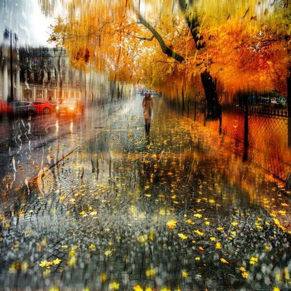 Дожди и до +15° – погода на 24 октября
