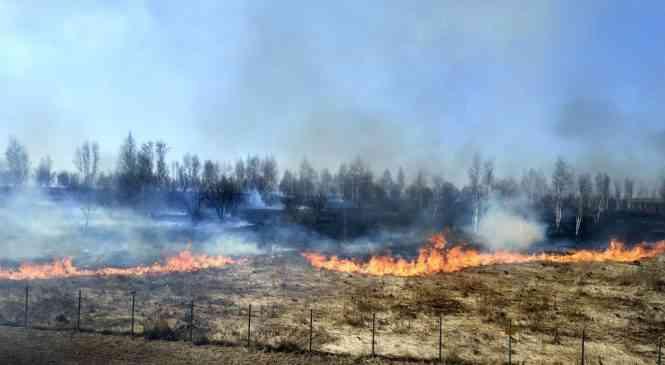 РОЧС: пожароопасный период продолжается