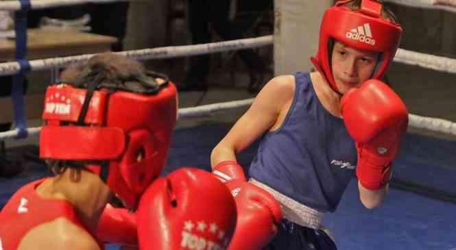 Очередные победы юных боксеров