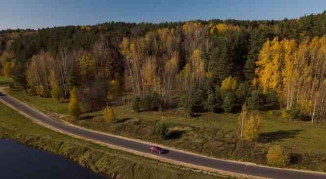 Акция «Чистый лес»: что нужно знать желающим поучаствовать