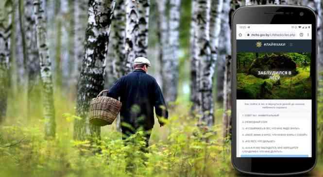Как не заблудиться в лесу: актуальный лайфхак от МЧС