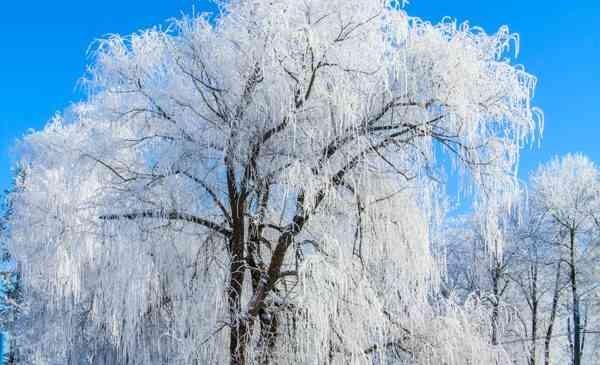 Зимнее настроение в Дзержинске: кадры из прошлого