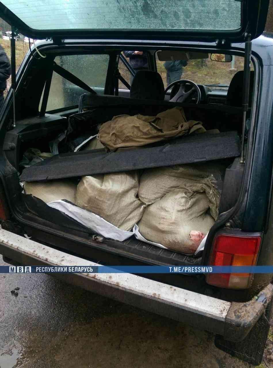 В Дзержинском районе браконьеров задерживали с погоней: в машине нашли мясо, а в лесу – разделанную тушу