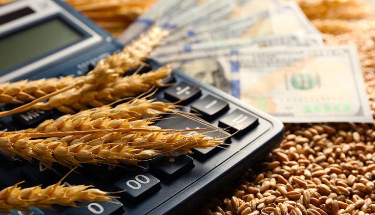 Золотое зерно: какие культуры могут принести хозяйствам наибольшую прибыль