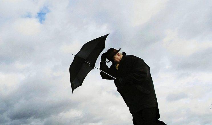 Не забудьте дома шарф! Порывистый ветер и до +16 в субботу