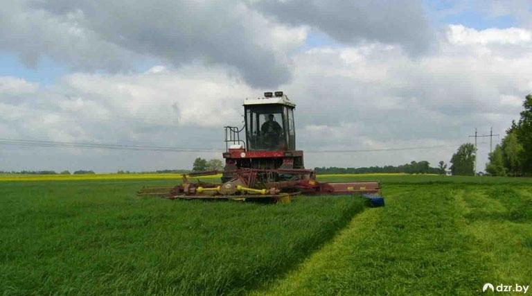 Урожай-2020: Есть погода — есть работа